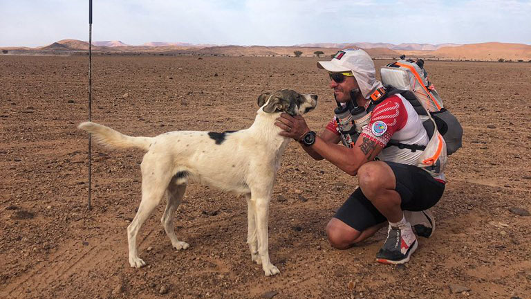 Marathon des Sables: Cactus the dog continues race (photos)