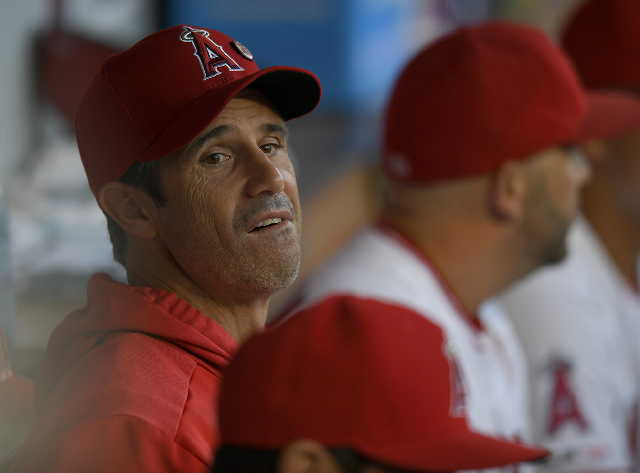mlb, wire, Brad Ausmus, los angeles angels, mike trout, joe maddon, tyler skaggs