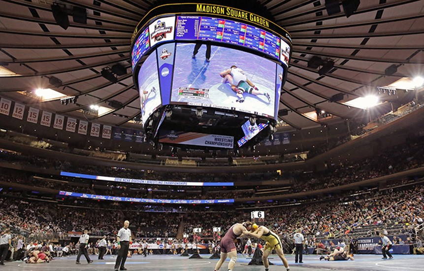 Ncaa Wrestling Tournament Makes For High Drama At Madison Square Garden