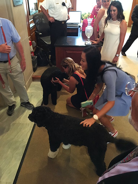 The #WhiteHouse dogs getting a visit from @themichellewie @ThePCreamer @Gerinapiller - #SolheimCupTrip