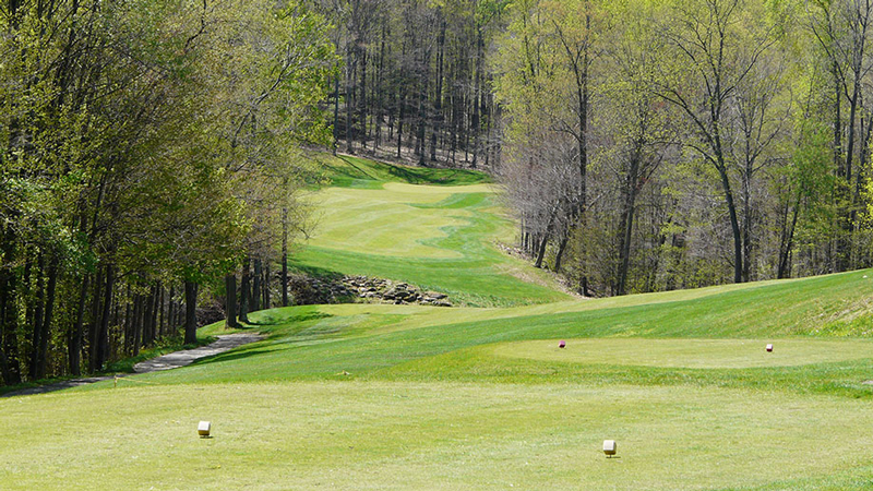 Black Diamond Golf Course is located in Millersburg, Ohio.