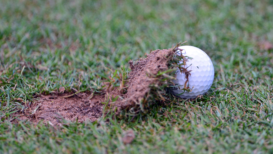 A ball comes to rest next to a divot.