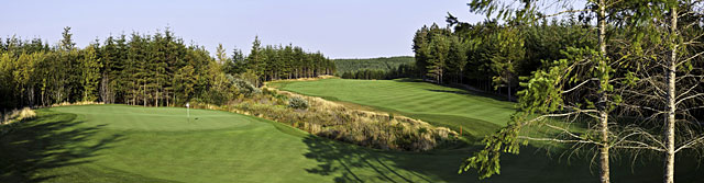 A wetlands area defends the green on the 14th at Salish Cliffs.