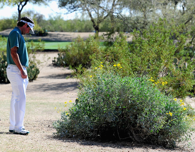 Bubba Watson looks at his ball in a bush before he takes a drop on the 13th hole during the third round of the Waste Management Phoenix Open. He parred the hole.