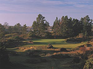 """The 17th hole at the soon-to-be opened Bandon Trails. <SPAN CLASS=""""picturesource"""">John Henebry</SPAN>"""