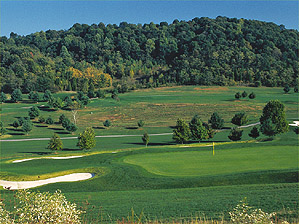 "The 1st hole on the Chimney Top nine, one of the three loops at Graysburg Hills <span class=""picturesource"">Ross D. Franklin</span>"