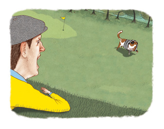 What's the ruling when a dog runs off with your ball?