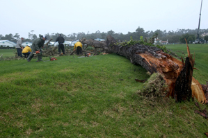 High winds knocked down a tree on the third fairway.