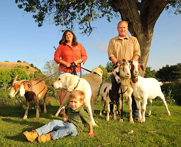 """Everyone loved the goats... it's driving everyone [at Pasatiempo] crazy. Folks keep asking, 'When will the goats be back?' - Lorraine Argo"