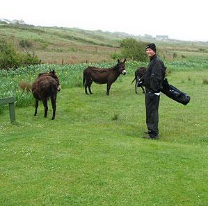 Coyne at Mulranny Golf Links.
