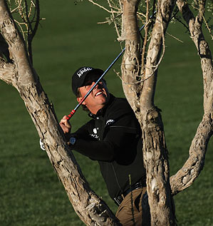 Mickelson found himself awkwardly close to a tree on the 11th hole.
