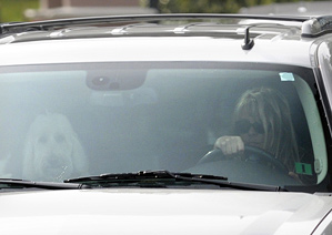 Elin Woods was seen leaving Isleworth with several dogs on Saturday.