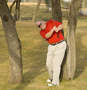 From between two trees only three feet apart, an upright swing can hit the ball 100+ yards.