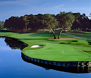 There's not much between ecstasy and despair at the 16th at TPC Sawgrass