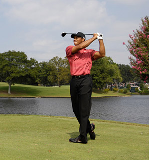 The Tour Championship was Woods's seventh victory of 2007.