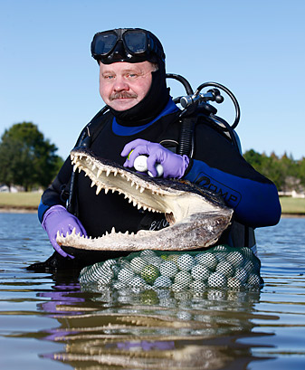 Stanfield surfaces after a recent dive near Tampa, Fla. On a good day, he can collect 1,000 balls in an hour.