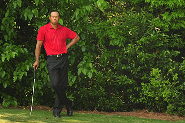 MADE IN THE SHADE: Tiger Woods looked like a winner for a while, but in the end a South African wore the green jacket, giving international players all four major titles for the first time since 1994.