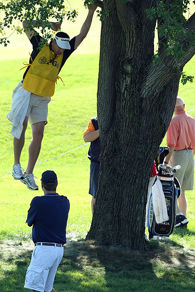 Bill Izer, caddie for Bob Estes, looked in a tree for his boss's tee shot at No. 8.