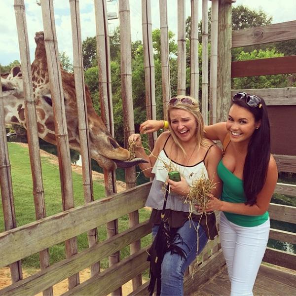 @aduf99 #sundayfunday at the #zoo @slsteph #champsandchimps