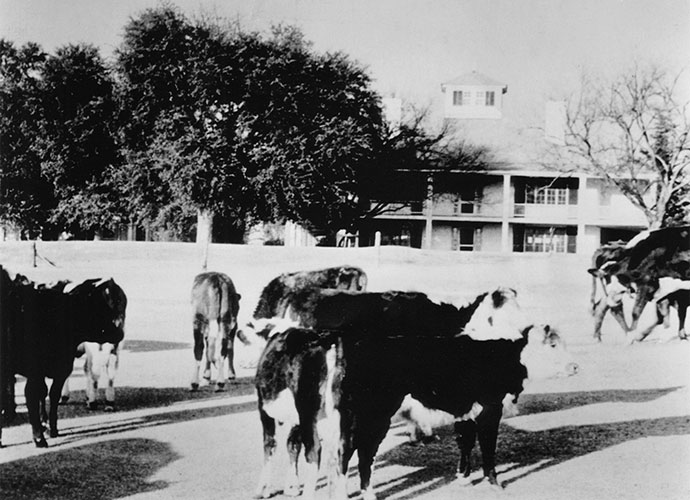 "War Comes to the Masters: From 1943 to December 1944, Augusta National closed as a golf club. At Jones' suggestion, it chose to support the war effort and improve its own finances by housing 200 head of cattle and more than 1,000 turkeys. The livestock kept the grass ""mowed,"" but they also beat up the fairways and devoured the plantings. Forty-two German POWs held at nearby Fort Gordon were brought over to restore the course. Members of a bridge-building engineering crew in Rommel's Africka Corps, the POWs erected a bridge over Rae's Creek near the 13th tee that lasted until the 1950s."