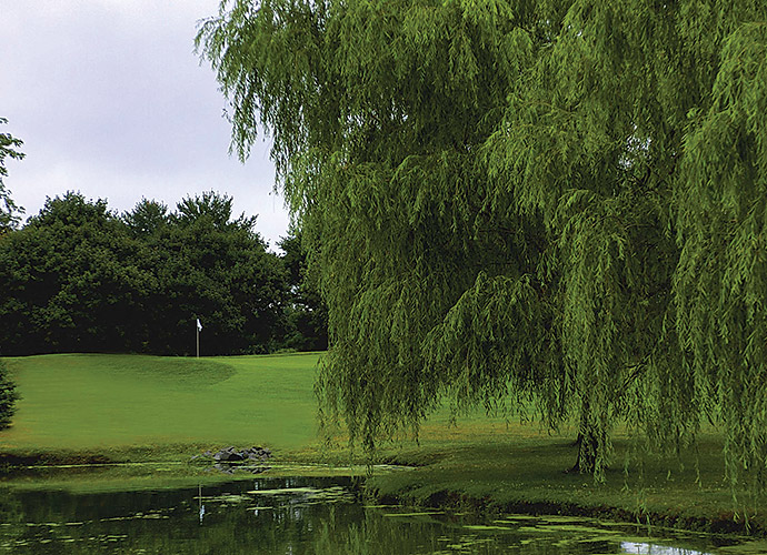 Cranbury Golf Club in West Windsor, N.J.: It's not quite a Cranberry, but it's close enough for our purposes. As side dishes go, Cranbury is tasty and won't leave you stuffed, with its 6,057 yards sloped at 125. Mature trees frame many holes on this 50-year-old track that's situated near the intellectual stronghold of Princeton, while the most memorable holes are the six par-3s, especially the forced-carry 225-yard 4th and the over-the-bog 155-yard 12th.