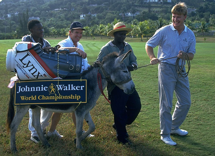 Ernie's Donkey                       You don't recognize this caddie? That's shocking. It's one we certainly could never forget. Ernie had a donkey as a temporary caddie in 1994 at the Johnnie Walker World Championship. Apparently the ass wasn't qualified to remain on Ernie's bag.