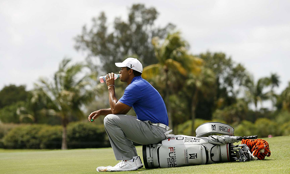 Fuse Science                           The energy drink maker has Tiger's bag sponsorship.