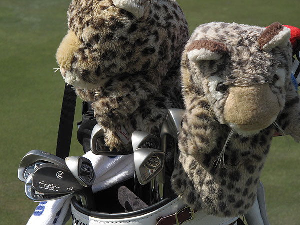 has two leopards guarding his clubs.