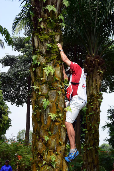 Kevin Na's caddie climbed a tree in search of a missing shot at the 16th hole.