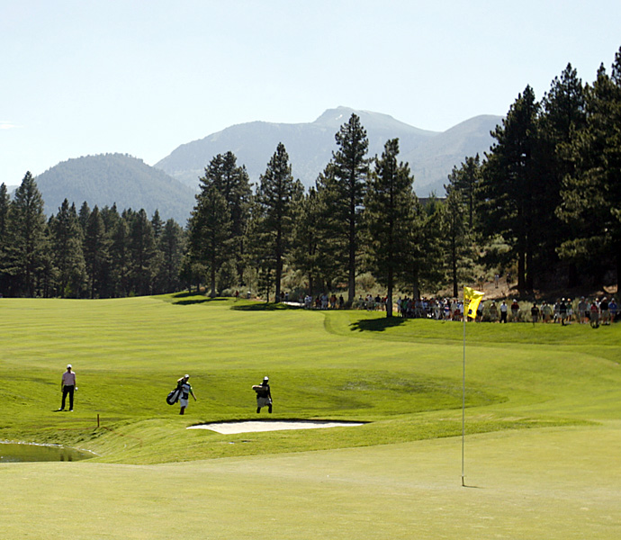 T-No.7                           616 yards -- 9th, Montreux G&CC                           Home of the Reno-Tahoe Open