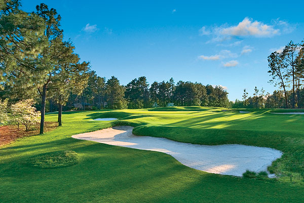 Pinehurst Resort                       Pinehurst, N.C.                       800-487-4653, pinehurst.com                       An early arrival to the green-golf movement, Pinehurst established the Safe Harbor Program way back in 1995, which protected and enhanced habitats for the endangered red-cockaded woodpecker.