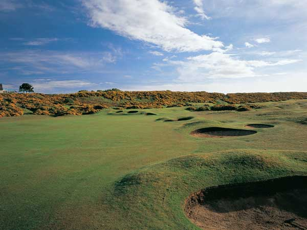 "Royal Dornoch, Scotland                           ""The course measures 6,732 yards from the championship tees, 6,514 from the medal tees, and 6,229 from the regular markers; par is 70. Since neither of the par 5s (496 and 506 yards) nor the one-shotters (177, 163, 147, and 166 yards) call for strong hitting, that requirement must be left to the par 4s. In fact, from the regular tees, eight of the 12 extend beyond 400 yards. And in a number of instances the long approach called for is to a plateau green, occasionally crowned and with sharp and shaven falloffs on the sides. Deft little pitches and chips or scuttles with the putter from somewhere off the green are at the heart of good scoring here. No hole is without challenge or charm; many holes possess both."""