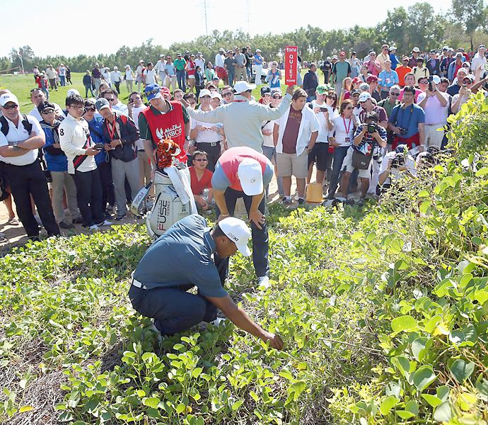 Tiger Woods' 2013 season featured moments of greatness, badness and general weirdness. His opening event at the Abu Dhabi Championship had a little of everything. Woods shot 72-75, and missed the cut. On the fifth hole on Friday, Woods hit his drive into deep brush to the right of the fairway. After consulting with playing partner Martin Kaymer (bent over in red vest), Woods took a free drop for an embedded lie. However, the area where Woods took the drop was known locally as a sandy area, meaning that Woods was not allowed to take a free drop. The error resulted in a  two-shot penalty that caused Woods to miss the cut by one stroke.