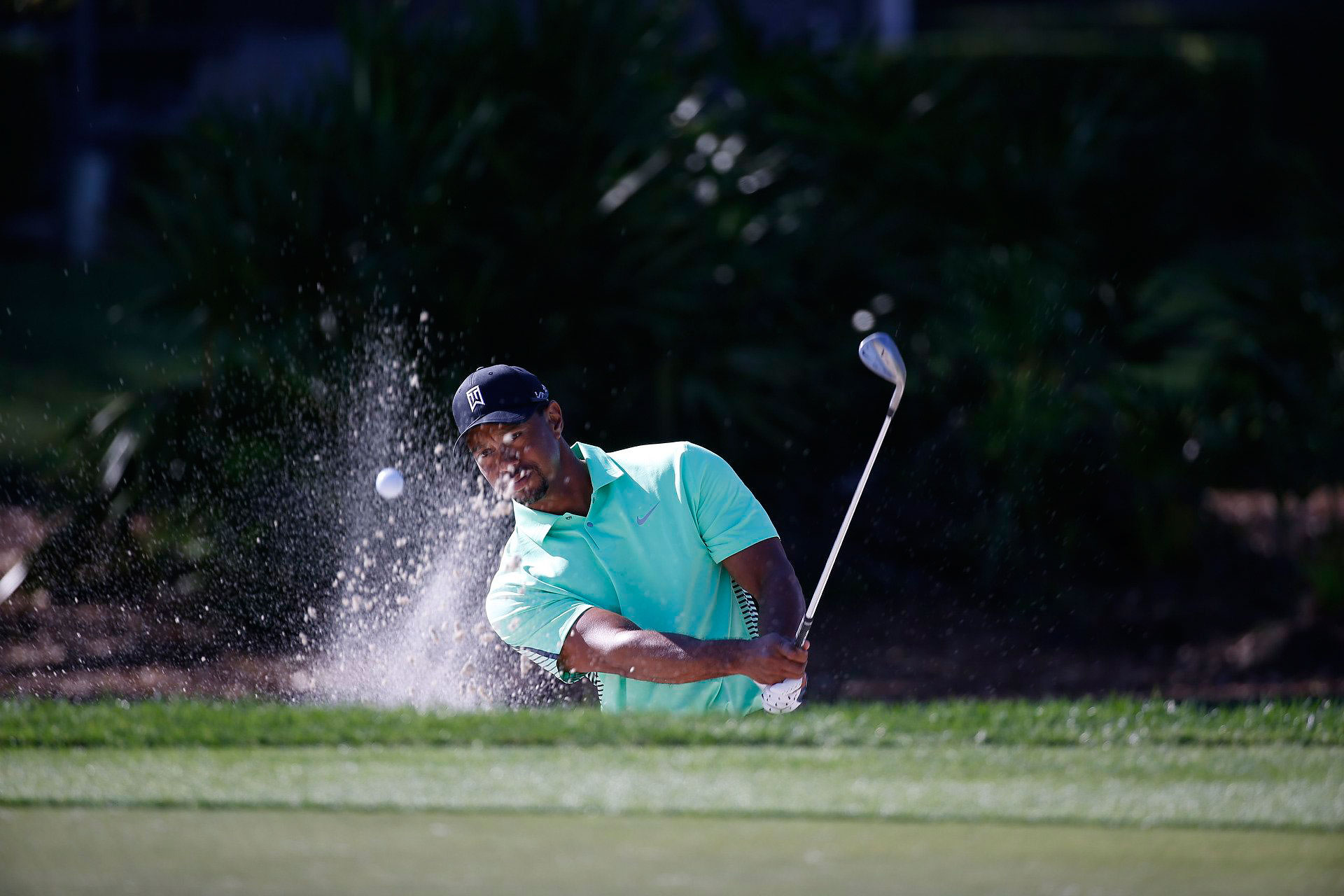 Tiger Woods blasts out of a bunker in the second round.