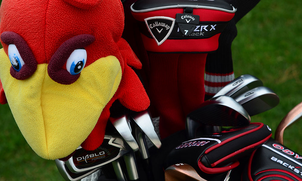 "Tommy ""Two Gloves"" Gainey's Callaway Diablo Forged irons and Forged wedges are guarded by a mean looking South Carolina Gamecock."