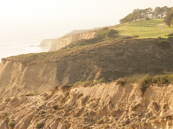 Torrey Pines Golf Course                           U.S. Opens Hosted: 2008 (Tiger Woods)                                                      Sound off and tell use what you think of these courses and the idea of the U.S. Open using a rota like the British Open. Read and post comments.