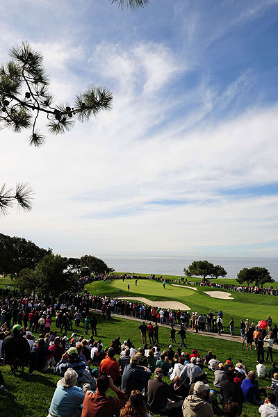 Fans watched Tiger's group on the fifth green. This view of Torrey Pines is about as good as it gets for spectators.