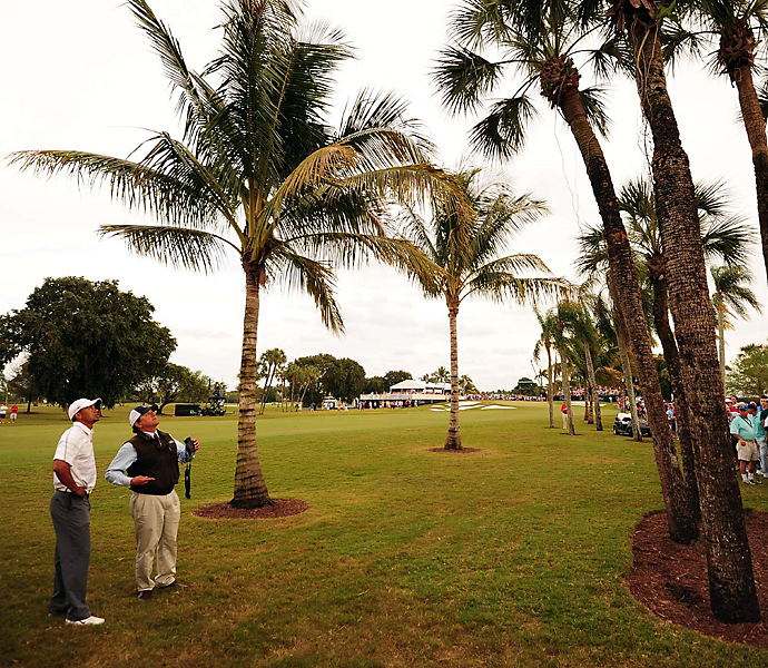 Woods ran into trouble during the 17th hole of the third round, when his ball stuck in a palm tree.