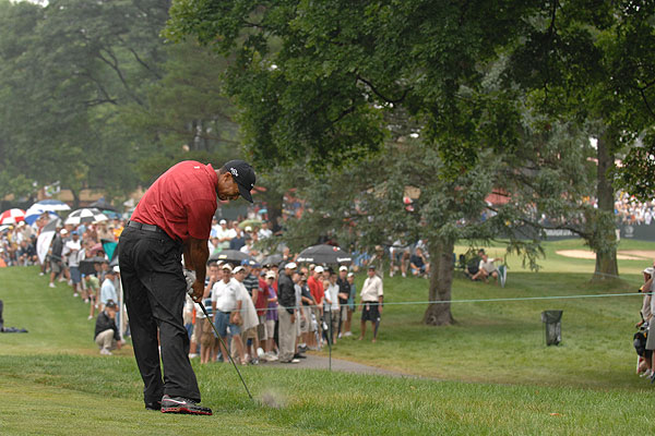 """Woods hit his tee shot on the ninth hole at Firestone Golf Club into the rough on the 10th. He tried to hit his second shot (shown here) over the tree, but he pulled it left of the ninth green and then chipped it over the green. Of course, since he's Tiger, he chipped in for a routine par."""