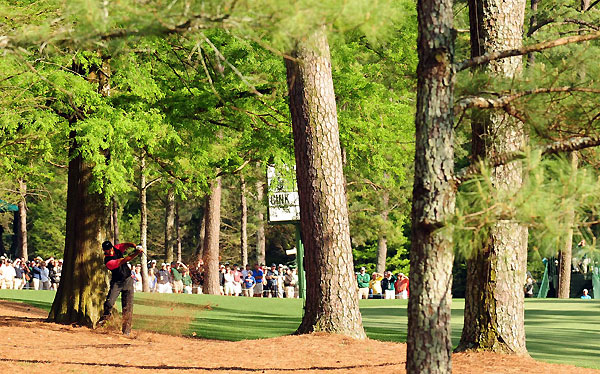 Final Round of the Masters                           Tiger Woods blasted out of the pine needles with his second shot on the par-5 13th hole at Augusta National. Woods made five on the hole, carded a par 72 and finished the tournament at five under, three shots back of Trevor Immelman.