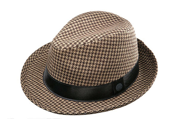 Fedora by Ashworth                       ($50)