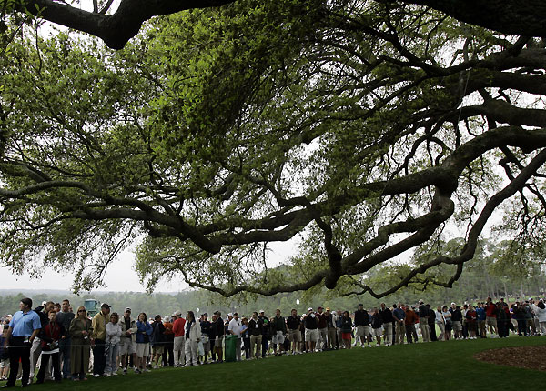 Patrons admired the famous 160-year-old oak tree near the clubhouse.• Golf personalities share memories of Augusta's oak tree