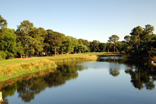 Palmetto Hall Plantation (Robert Cupp course), Hilton Head Island, S.C.                           Unlike anything you've ever seen, Palmetto Hall's Cupp course was designed on computer, with the results replicated in the field. Thus was born (in 1993) the first geometric golf course, with square and rectangular tees and greens, trapezoidal bunkers and grass pyramids lining the sides of many fairways. It may be the only course in golf where you need a protractor and compass to break par.