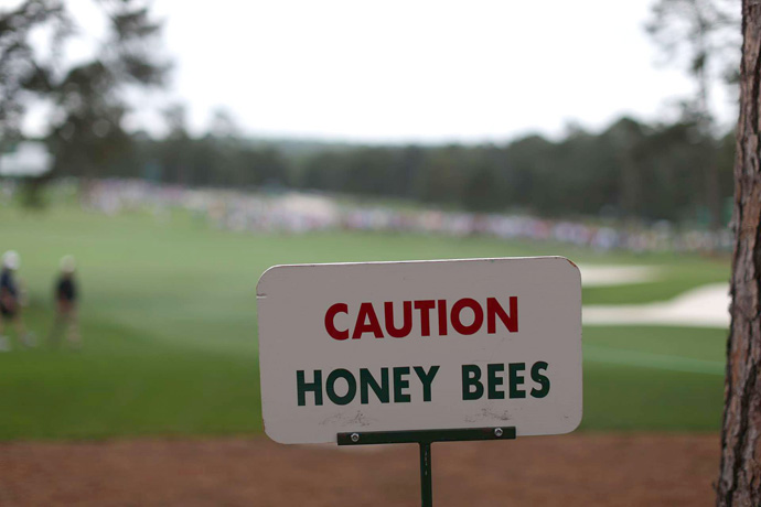 There are plenty of hazards at Augusta National.