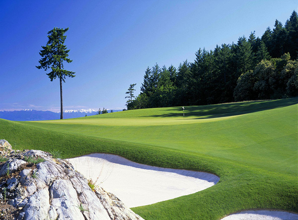 Take a closer look at five of the courses along the Vancouver Island Golf TrailBear Mountain (Mountain)Victoria, BC7,212 yards$59-$1491-888-533-BEAR (2327)bearmountain.ca