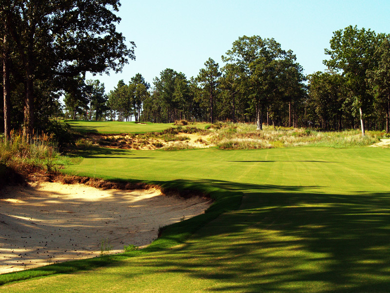 2. Dormie Club, West End, N.C.                             Because of multiple ownership squabbles, this Pinehurst-area course has suffered from an identity crisis. It's private! Wait, it's public! Wait...is it even open? That's a shame, because this two-year-old Coore/Crenshaw design is a worthy addition to any Pinehurst trip, with its hilly terrain, firm conditions, challenging carries over wetlands and, most impressively, its beguiling green complexes.