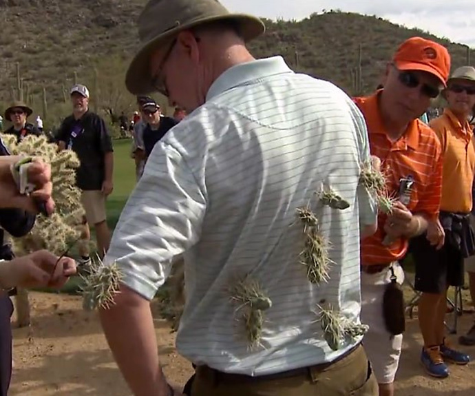 """Weaponized vegetables.""                       --CBS Sports' David Feherty's description of the jumping cholla cactus plants at Dove Mountain golf course, host of the Accenture Match Play Championship."