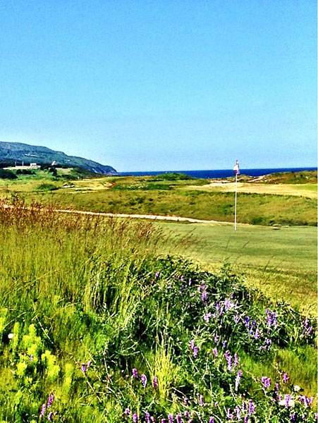 """@eamonlynch: Standing by the first tee looking across the 5th green to the Gulf of St Lawrence. ‪#cabotlinks"""