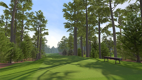 Jim Nantz teams up with David Feherty to lead the all-new broadcast presentation package. Enhanced visuals showcase high fidelity character models and course details that bring to life all the sights and sounds of a round of golf at Augusta National.  For the first time in franchise history, the game will feature 3D grass, which will appear and respond more like actual grass.