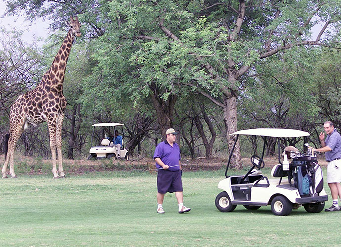 Hans Merensky Golf Course, South Africa: This quirky course is part golf, part wildlife safari.